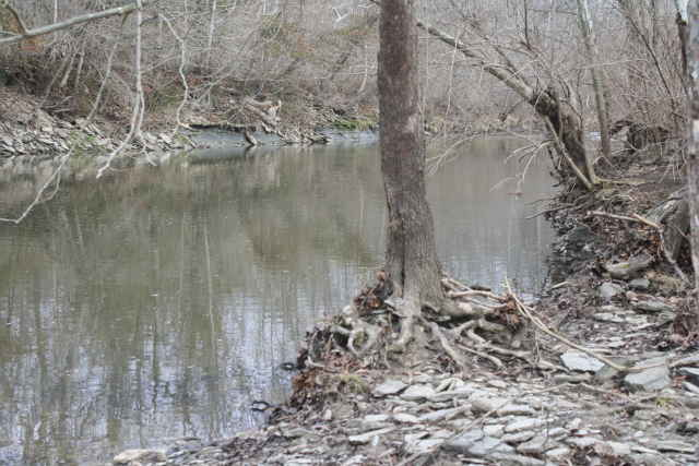 picture of O'Bannon creek