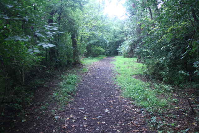 picture of the trail